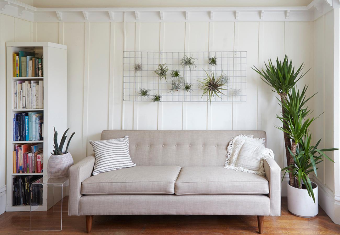 Flora Grubb Gardens Modern Houseplant Inspiration.png
