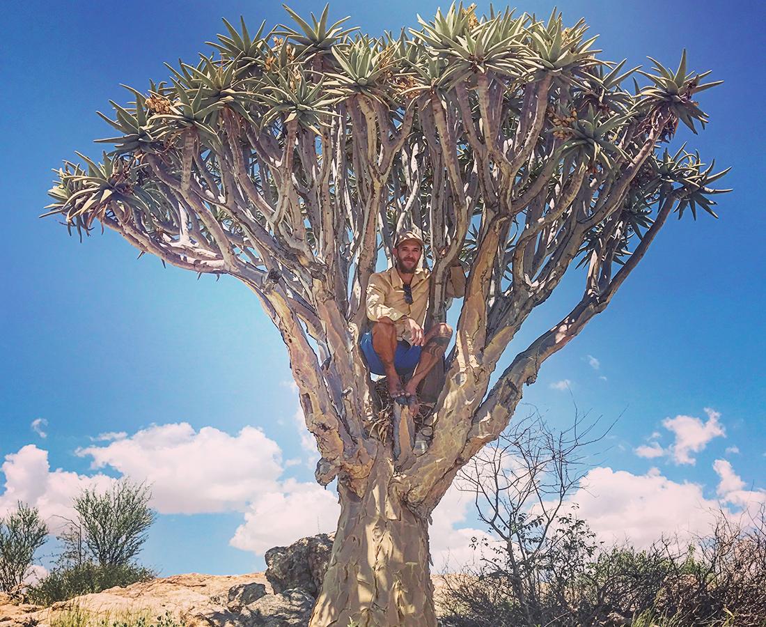 Flora Grubb Gardens - Tyson Curtis Aloe Manifesto - Aloe Dichotoma.png