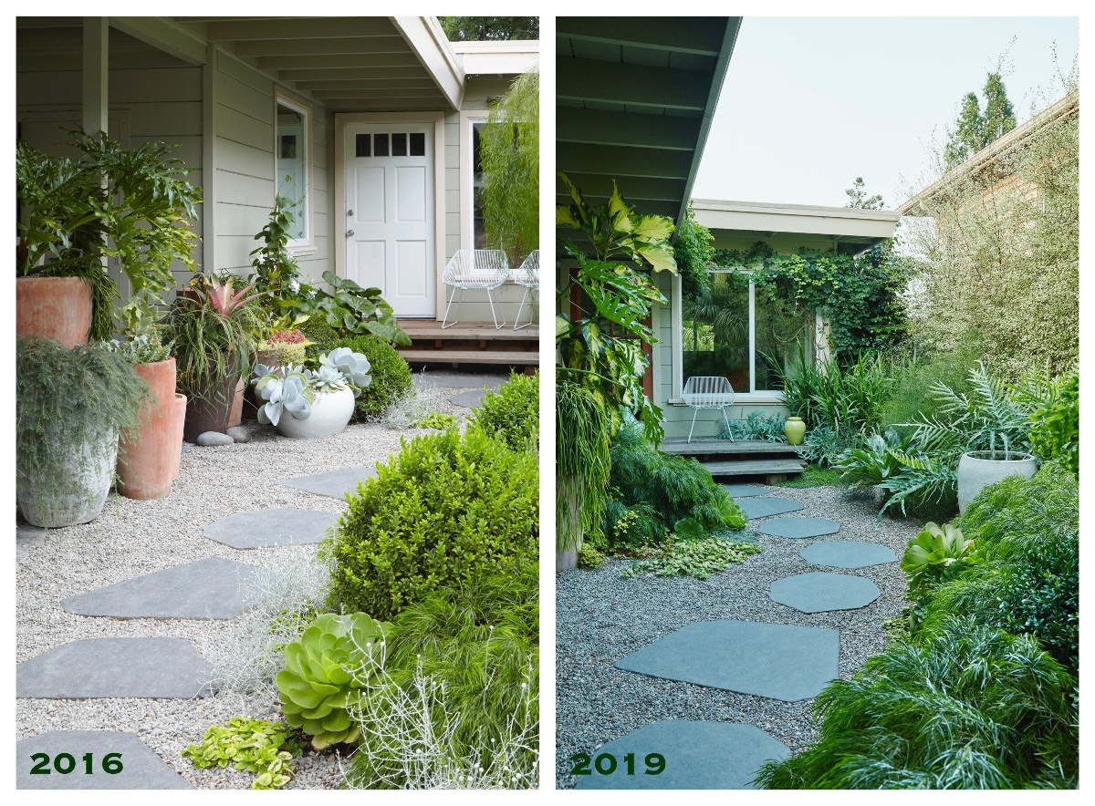 Flora Grubb Gardens - Front Garden Before and After.png