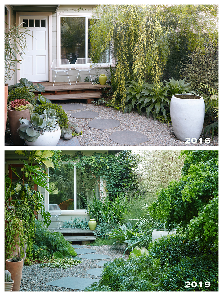 Flora Grubb Before and After Entryway.png