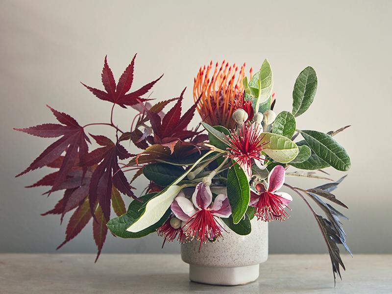 Flora Grubb Gardens Proteaceae and Japanese Maple Arrangement.png