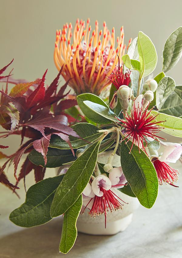 Flora Grubb Gardens Protea Cutting Garden for Mom.png