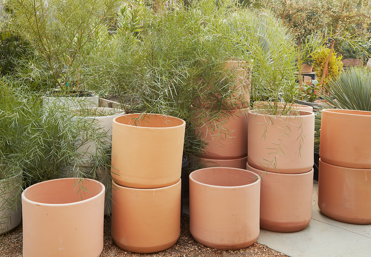 MODERN TERRA COTTA POTS AND PLANTERS