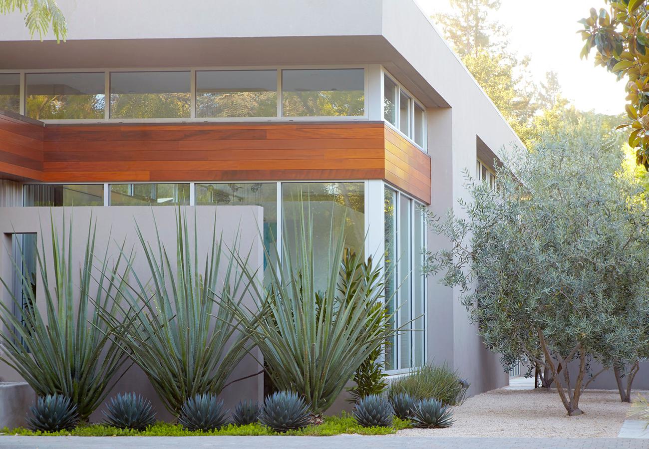 Flora Grubb Gardens - Steal This Look - Modern Entry Garden - Daniel Nolan - 2.png