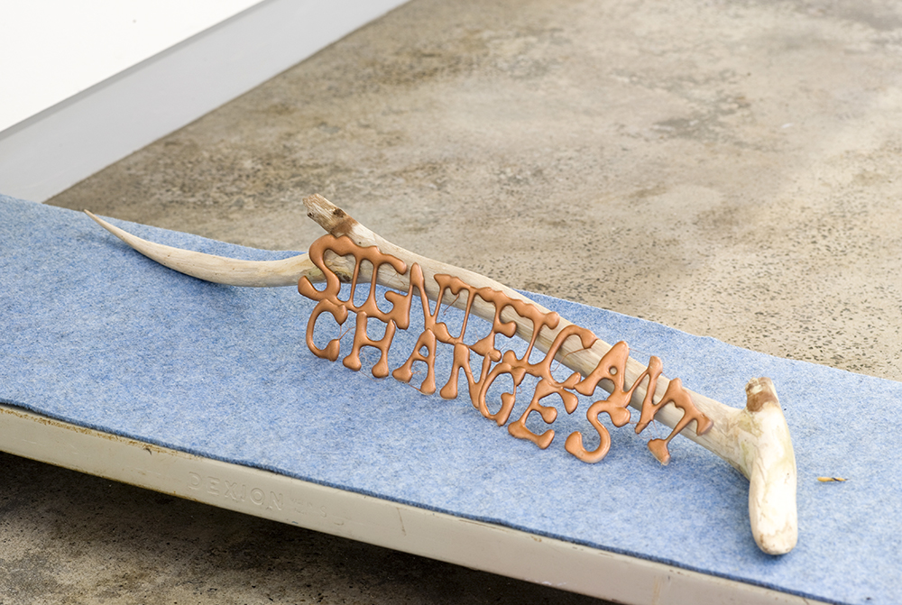 Sarah Goffman, Significant Changes, 2009, Group Show, Breenspace, Sydney (photo: Jamie North)