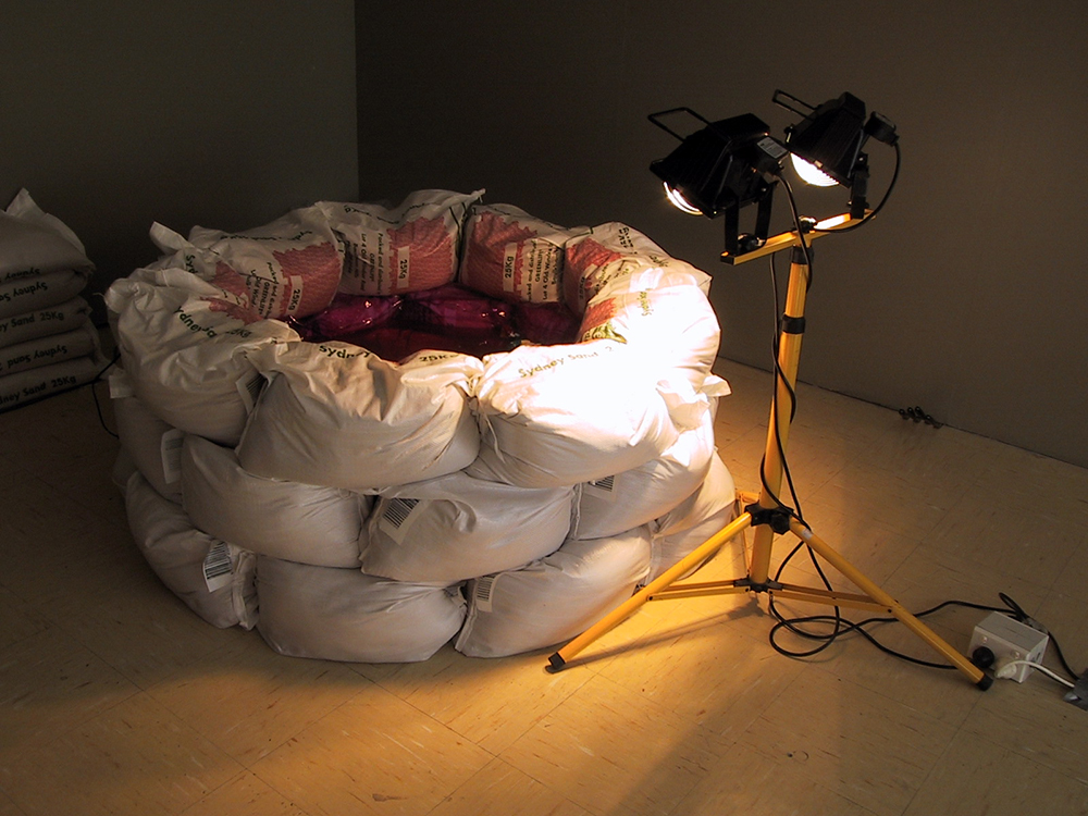 Sarah Goffman, Swell, 2002, Block Gallery, Sydney