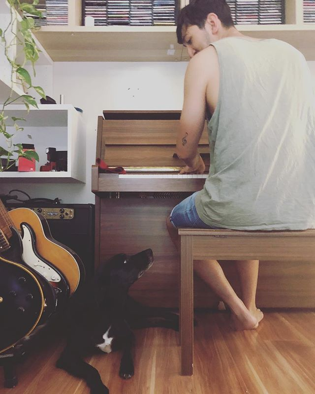 Meeting of minds. #dogsofinstagram #blackdog #piano #canberra #musician #newyear