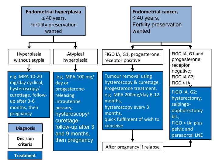 endometrial cancer investigations)