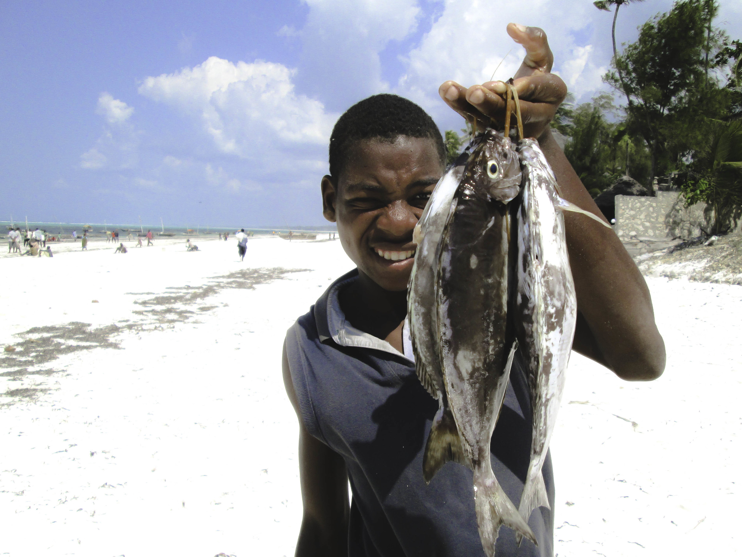Zanzibar, Tanzania.  A young fisherman displays his catch at the afternoon fish market where island restaurants and locals barter for fish and seafood in a fast paced auction.
