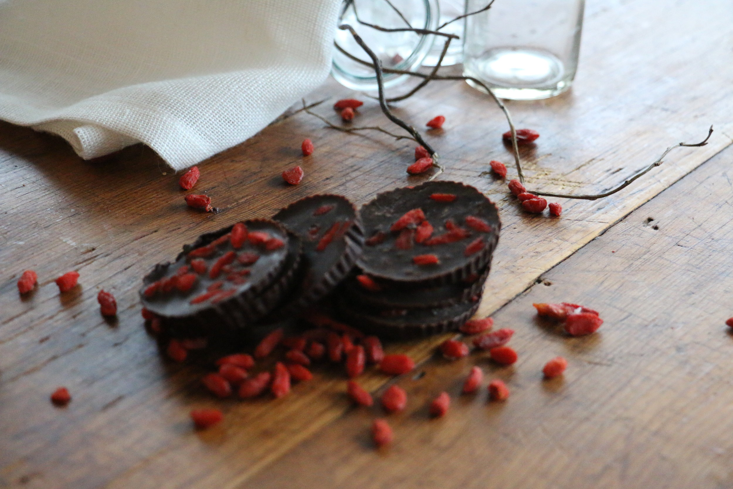 Dark Chocolate & Goji Berry Coins