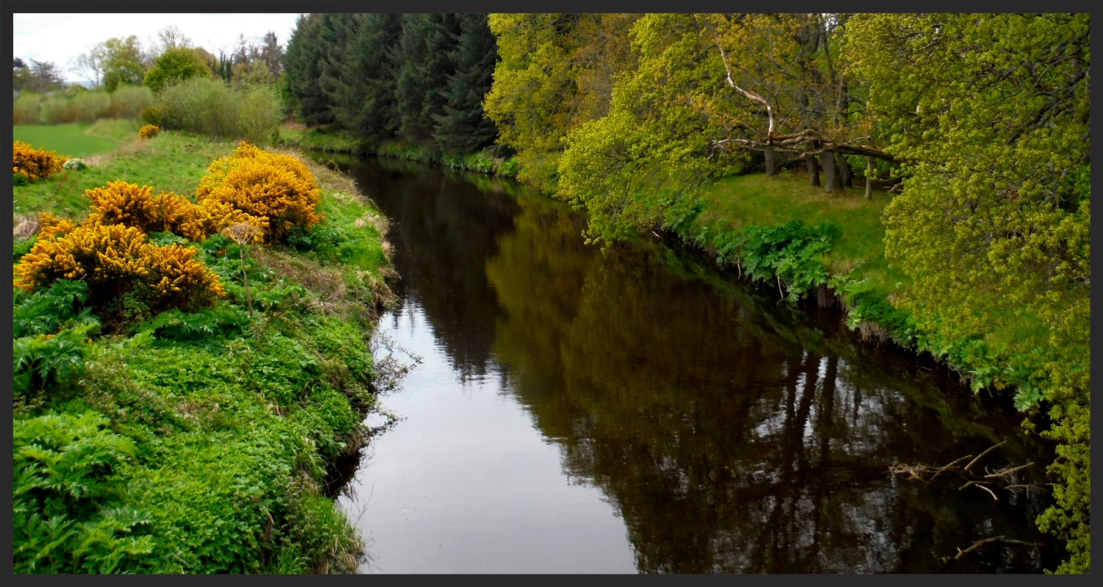 The Lossie River. Most of the contents of your Glen Moray originated here.