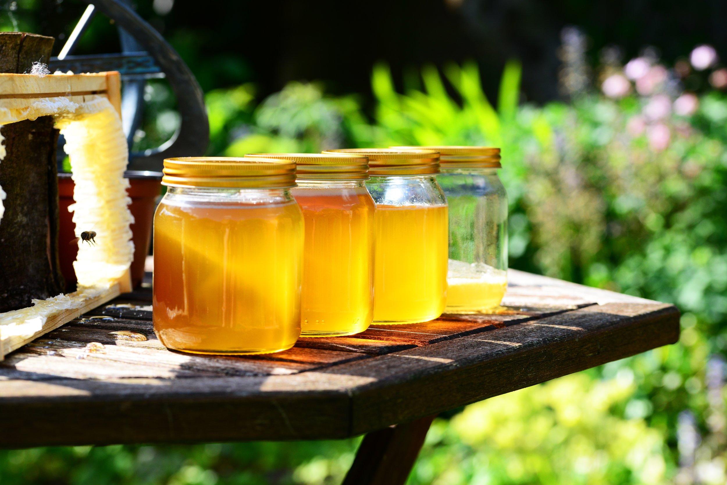 honey-352205.jpg