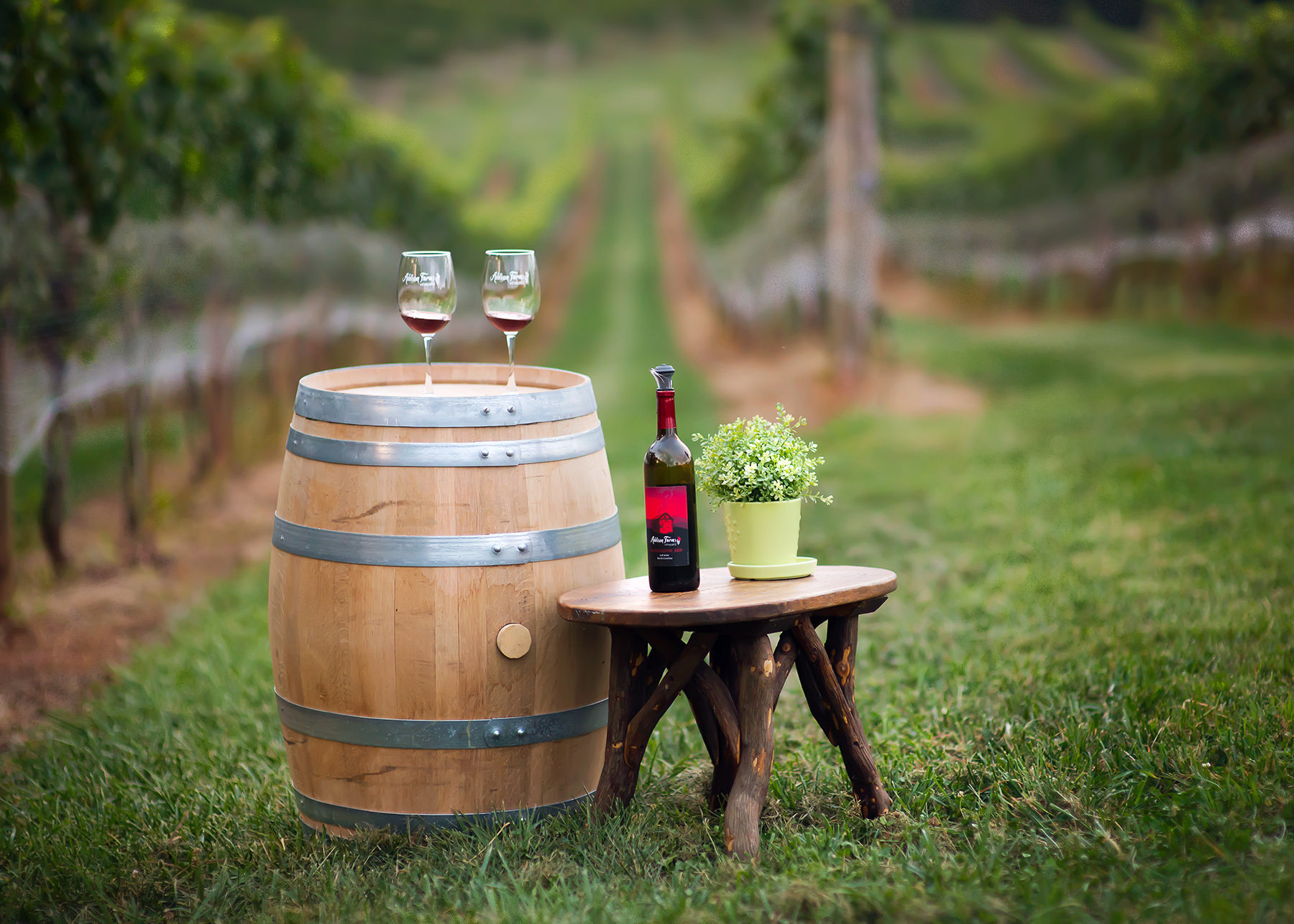 ABBA_AddisonFarmsVineyards_LandscapewithBarrel.jpg