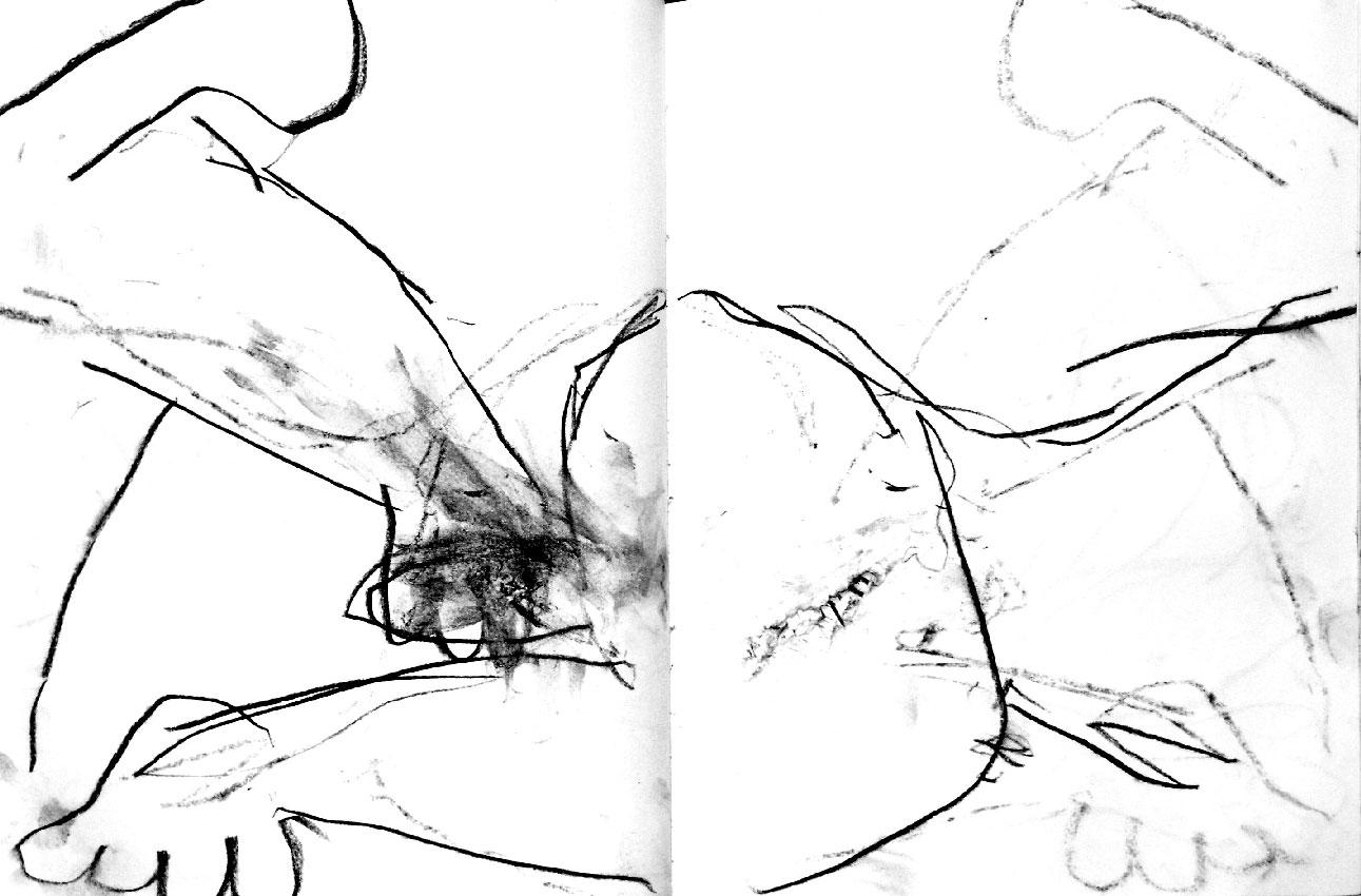 chatoiements---galerie-du-tableau----rochegaussen.jpg