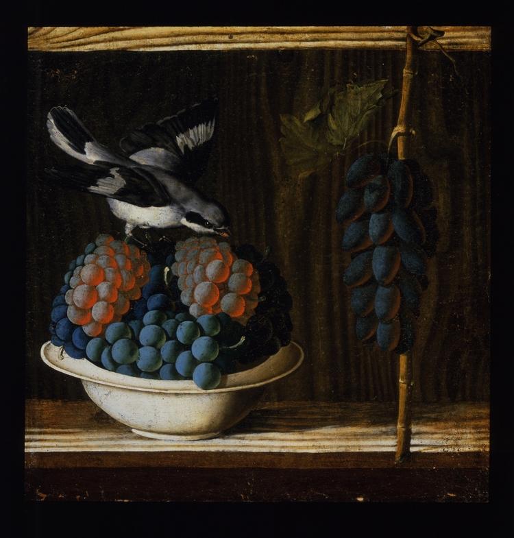 Antonio da Crevalcore – Still Life with a Bird, Grapes and Figs