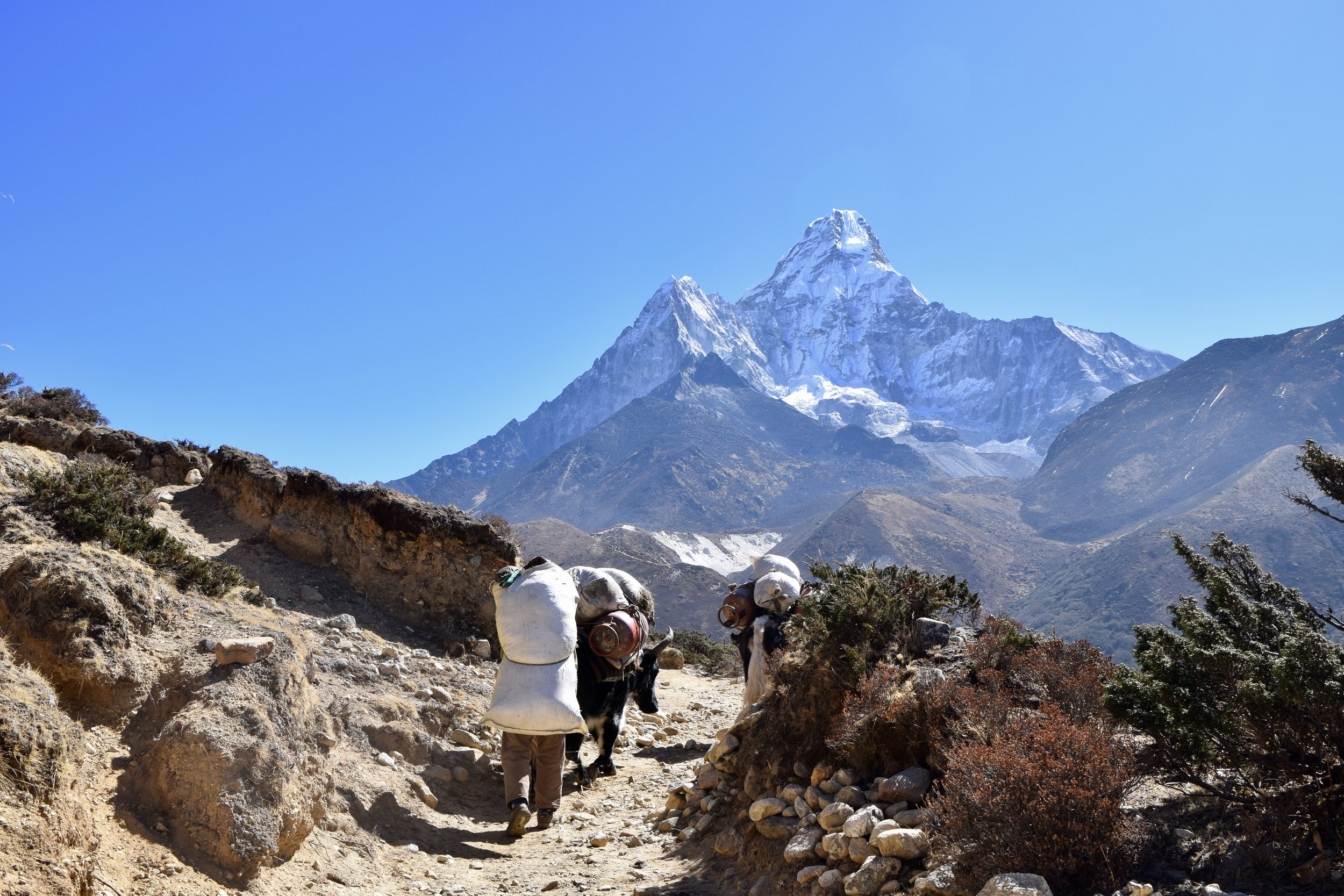Dusty walk to Dingboche