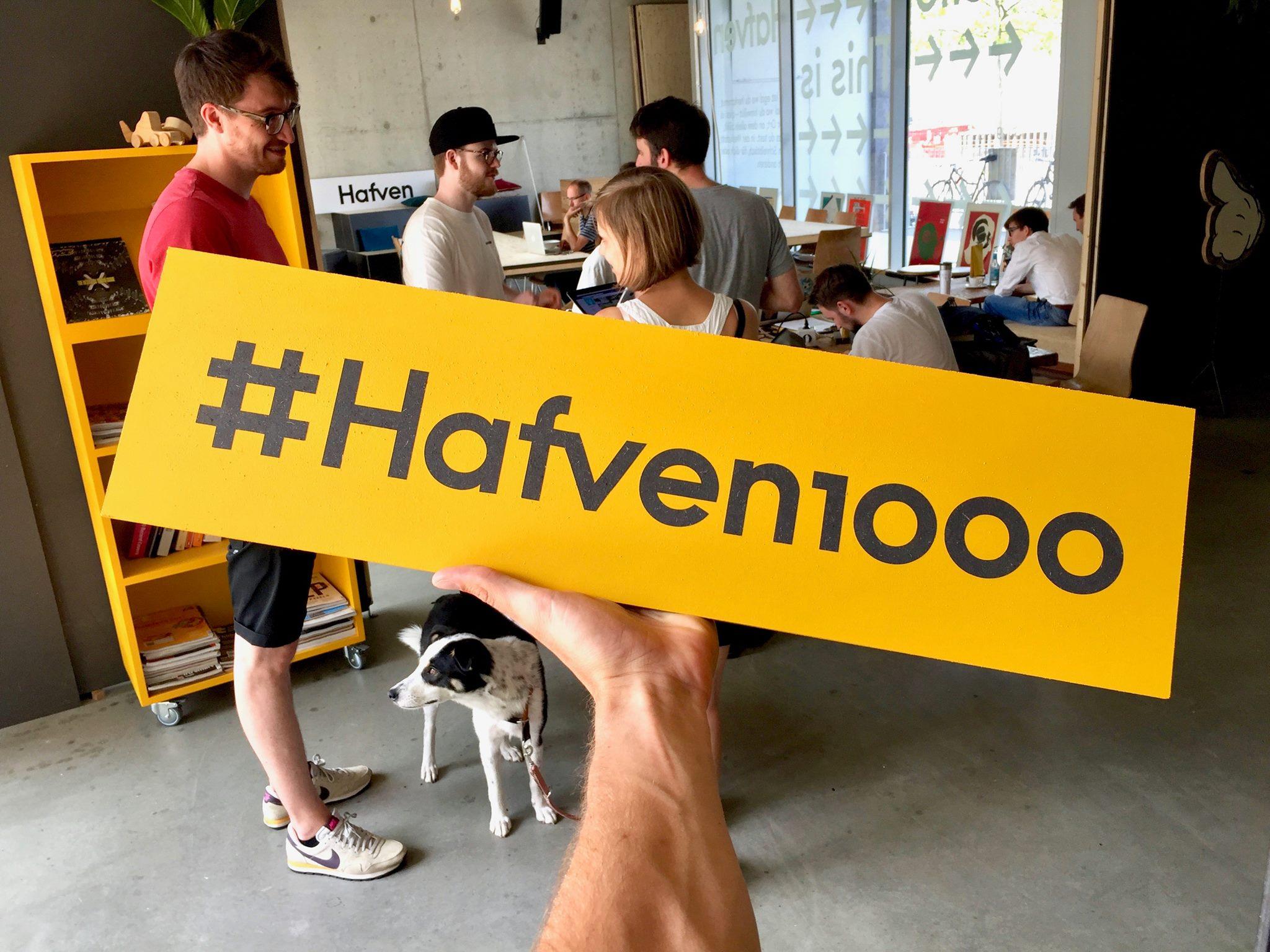 #Hafven1000 – Hunde nicht mitgezählt ;)