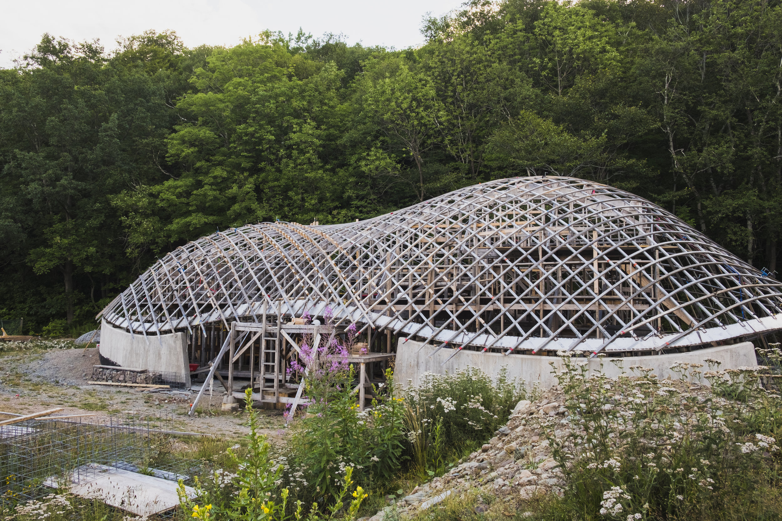 Highlands Gridshell August 2019