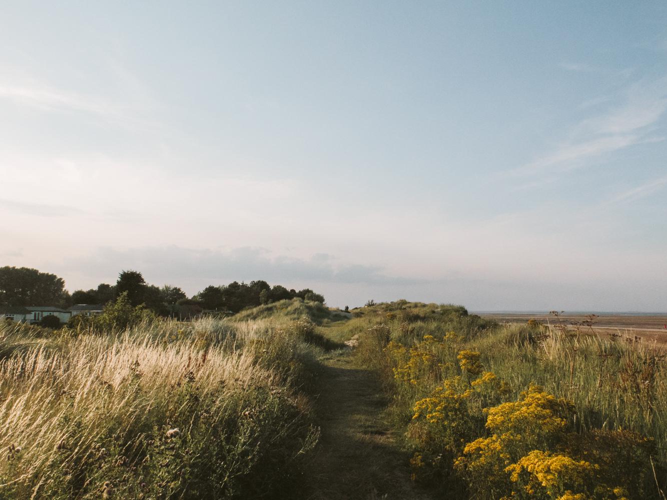 Haarkon Dunes Humberston Coastal Nature