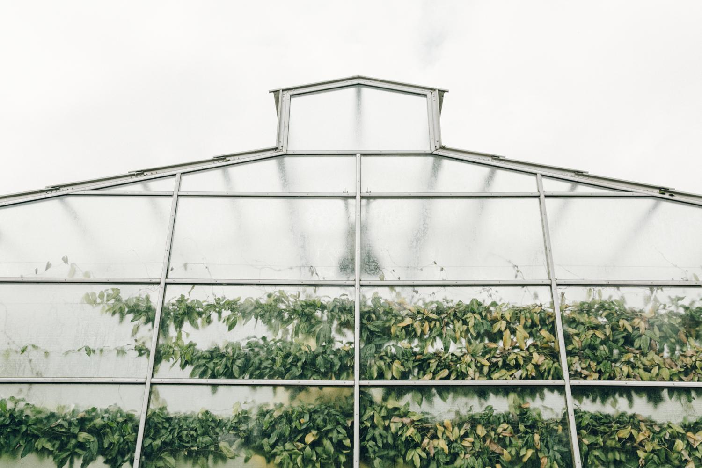 Haarkon Oxford Glasshouse Greenhouse Botanical Gardens Nature