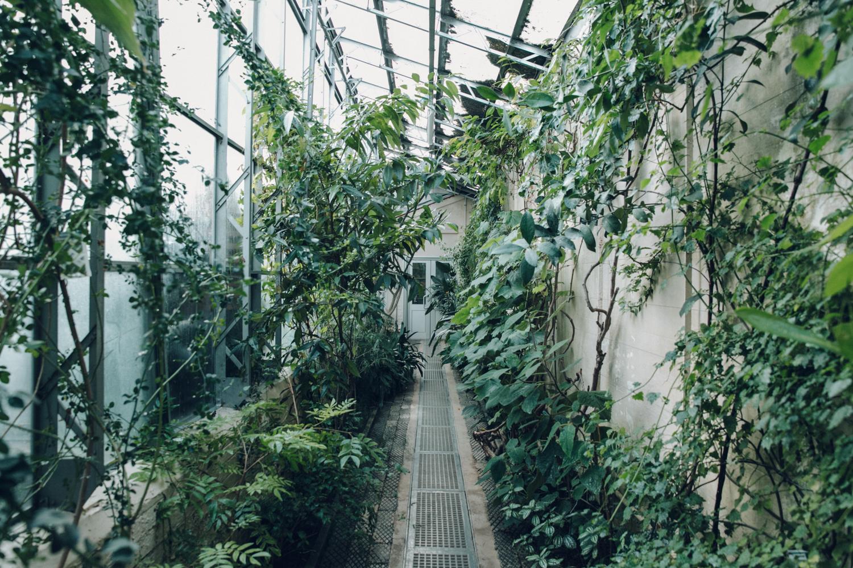 Haarkon Garden Green Glasshouse Greenhouse Oxford