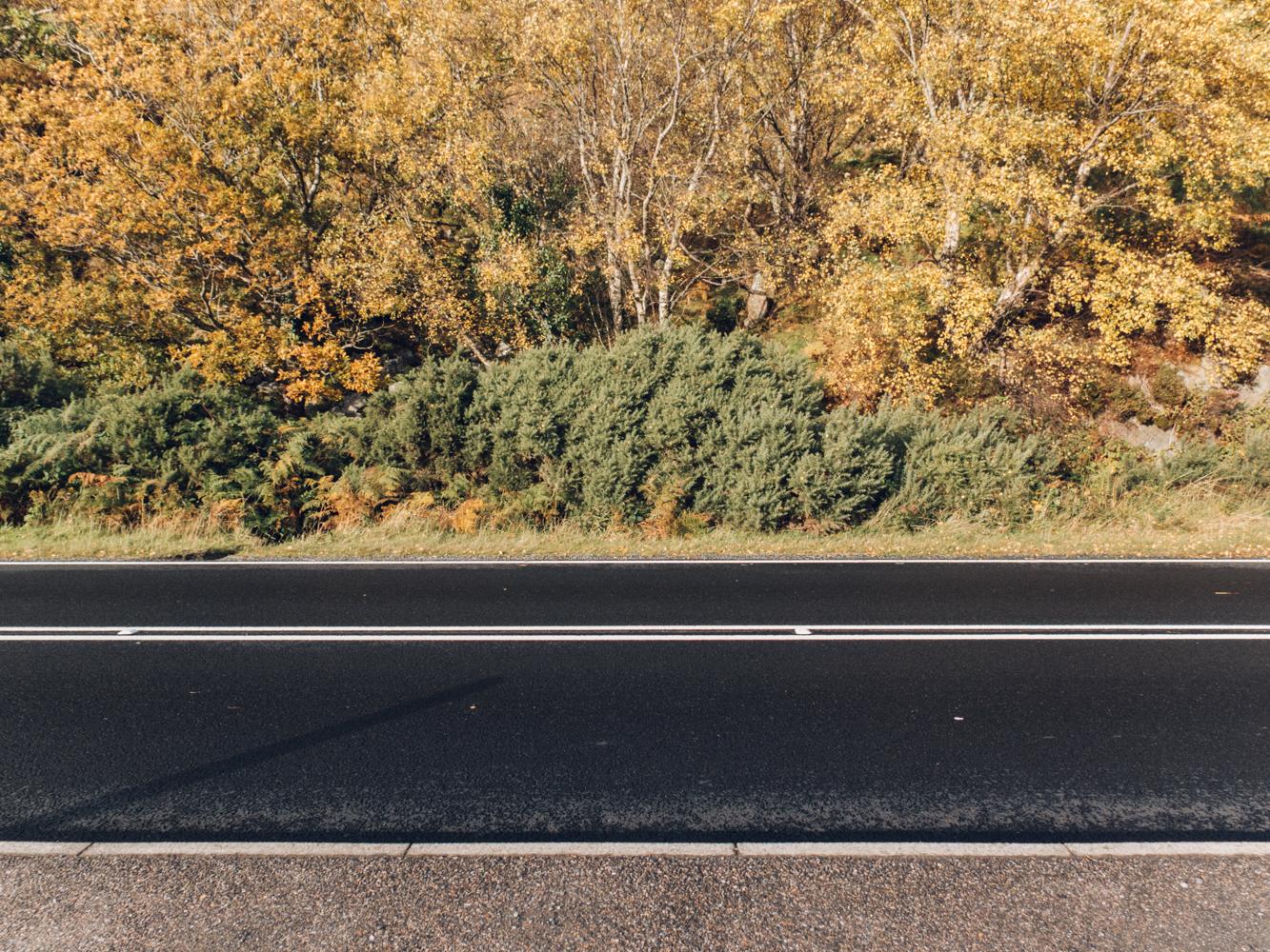 Haarkon Road Travel Autumn