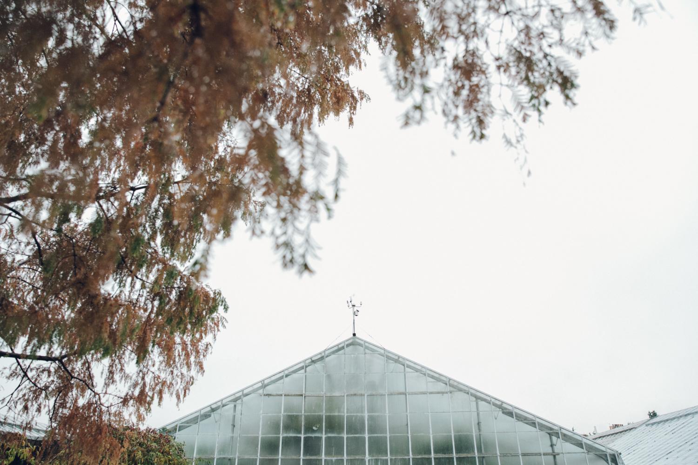 Haarkon Glass Architecture Building Steel Autumn Tree