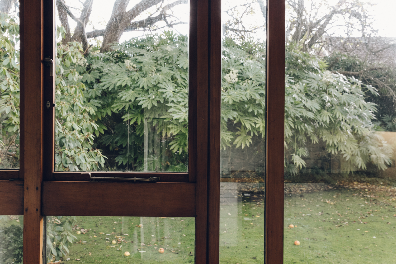 Haarkon Window Glass Glazing Light Tree Garden Green Design