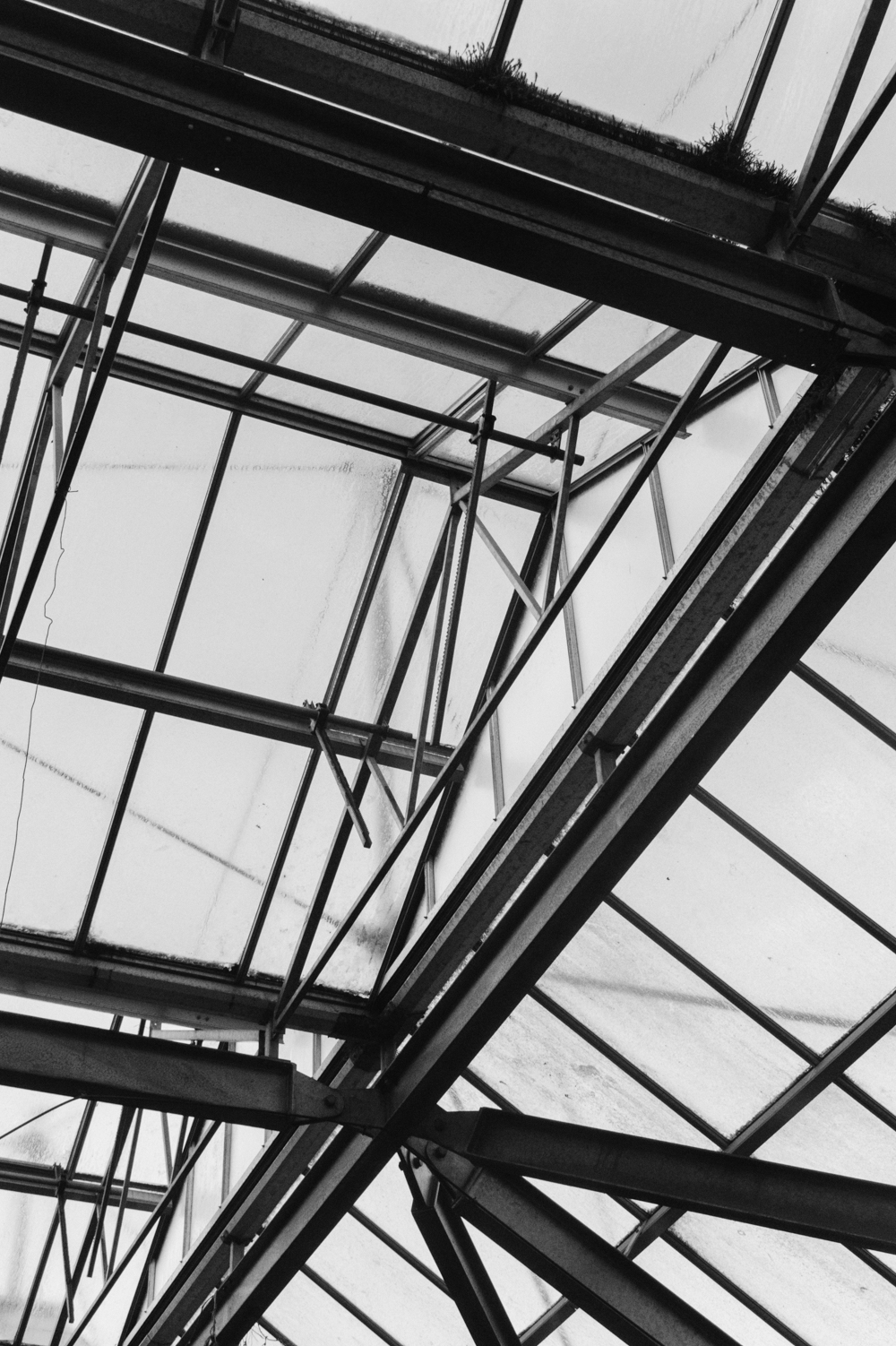 Haarkon Ceiling Roof Glass Glazing Architecture Glasshouse