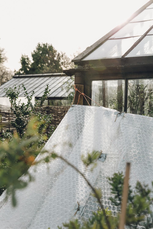 Haarkon Plants Garden Chelsea Physic Greenery Glasshouse Winter London Light