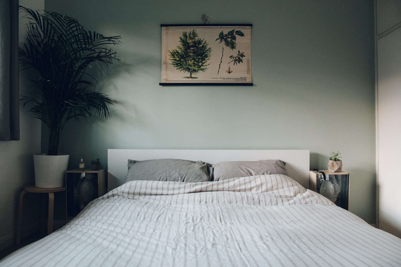 Haarkon Light Shadow Wall Bed Home Interior House Plant Ikea Lamp