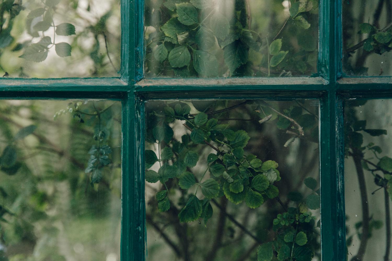 Haarkon Sheffield Botanical Gardens Pavilion Glasshouse Greenhouse Victorian Plants Greenery Park reflection light