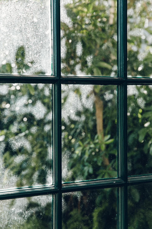Haarkon Sheffield Botanical Gardens Pavilion Glasshouse Greenhouse Victorian Plants Greenery Park Window Glass Nature