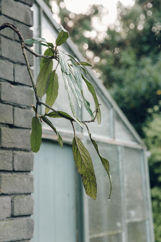 Haarkon David Mellor House Greenhouse Glasshouse Shed Architecture Garden