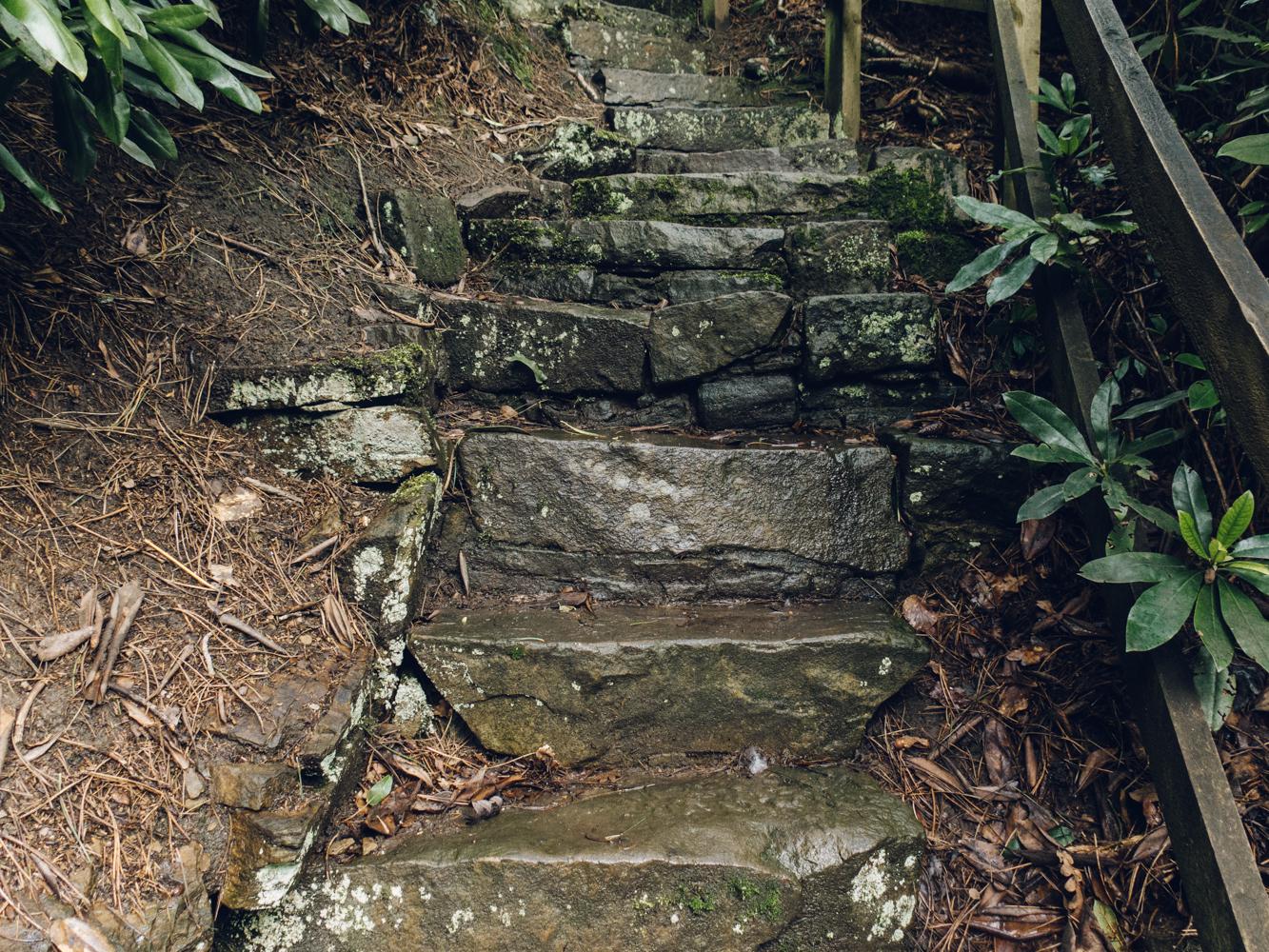 Haarkon Whinfell Quarry Gardens Sheffield Rhodedendron Travel Nature Park