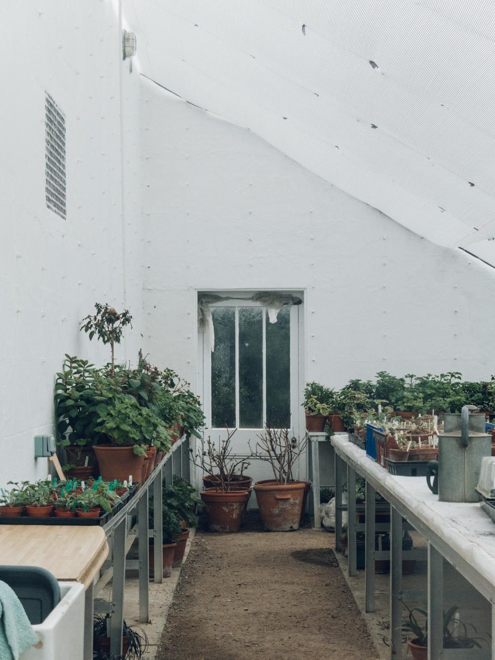 Haarkon Clumber Park Sherwood Forest National Trust Glasshouse Greenhouse Garden Plants