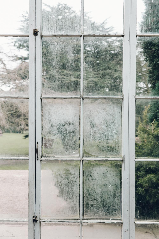 Haarkon Glasshouse Greenhouse Camellia House Conservatory Plants Nature Greenery