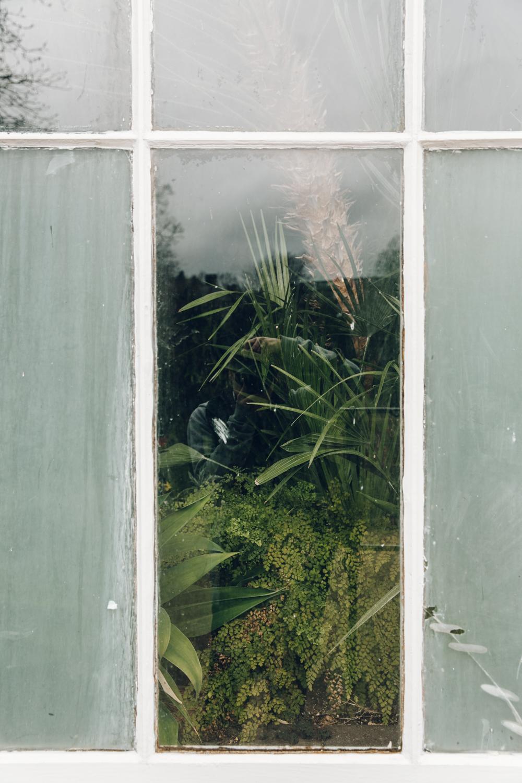 Haarkon Buxton Garden Glasshouse Greenhouse Plants Greenery