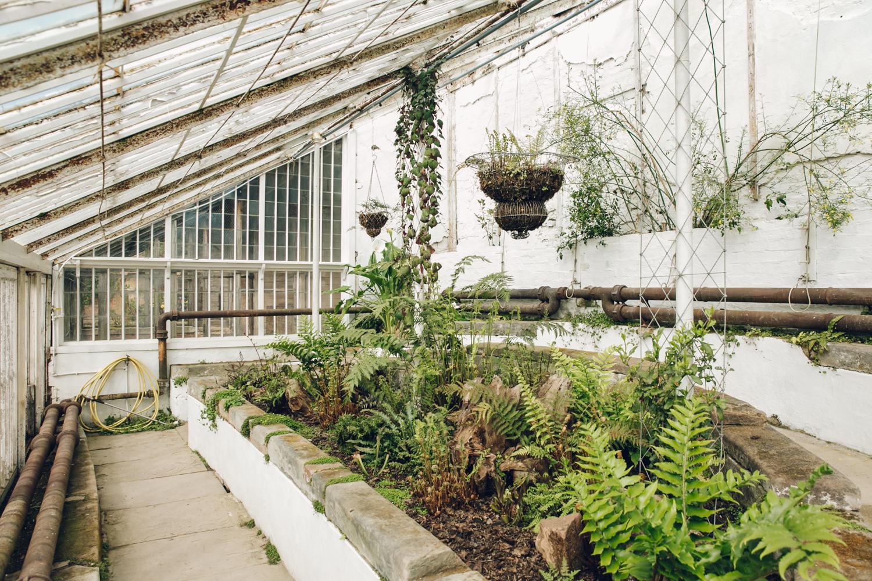 Haarkon Calke Abbey Gardens Greenhouse Glasshouse Fernery Plants