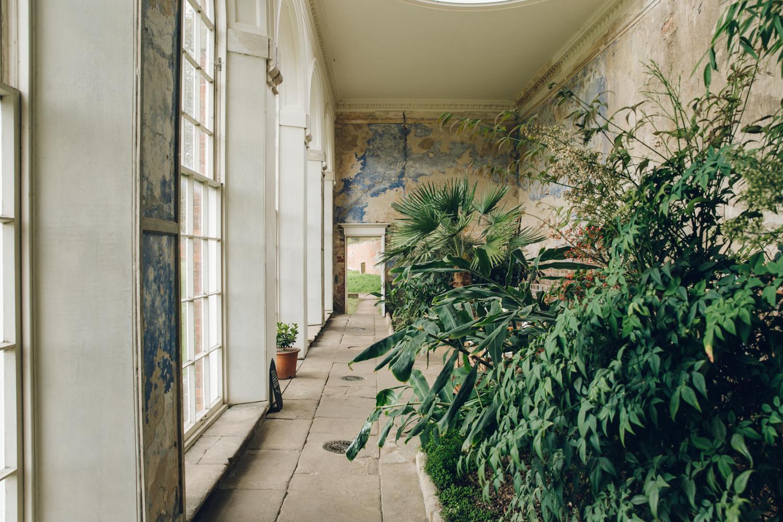 Haarkon Calke Abbey Greenhouse Glasshouse Orangery Plants Garden Nature Greenery