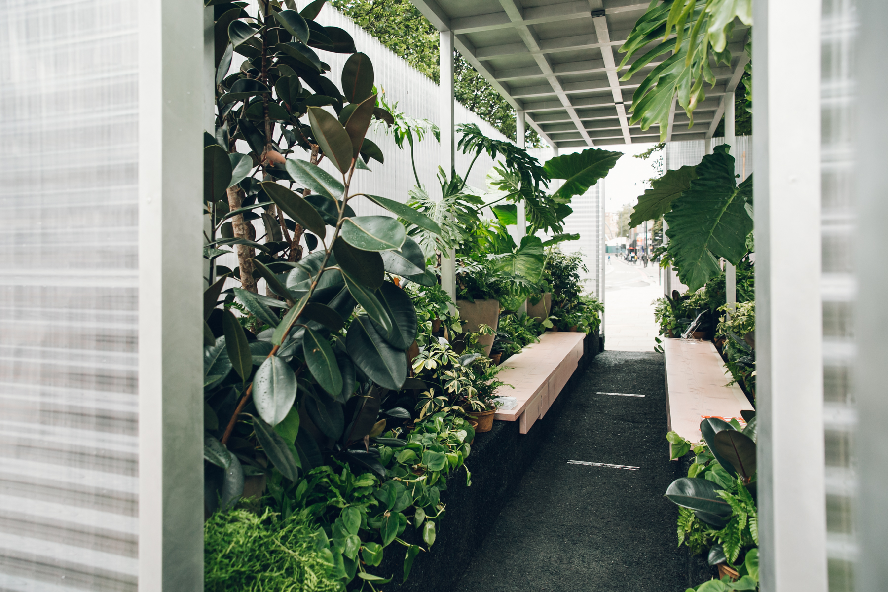 Plants inside the architectural installation for MINILiving.