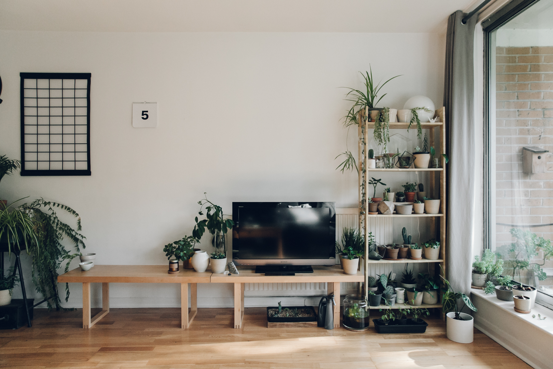 A plant-filled living room.