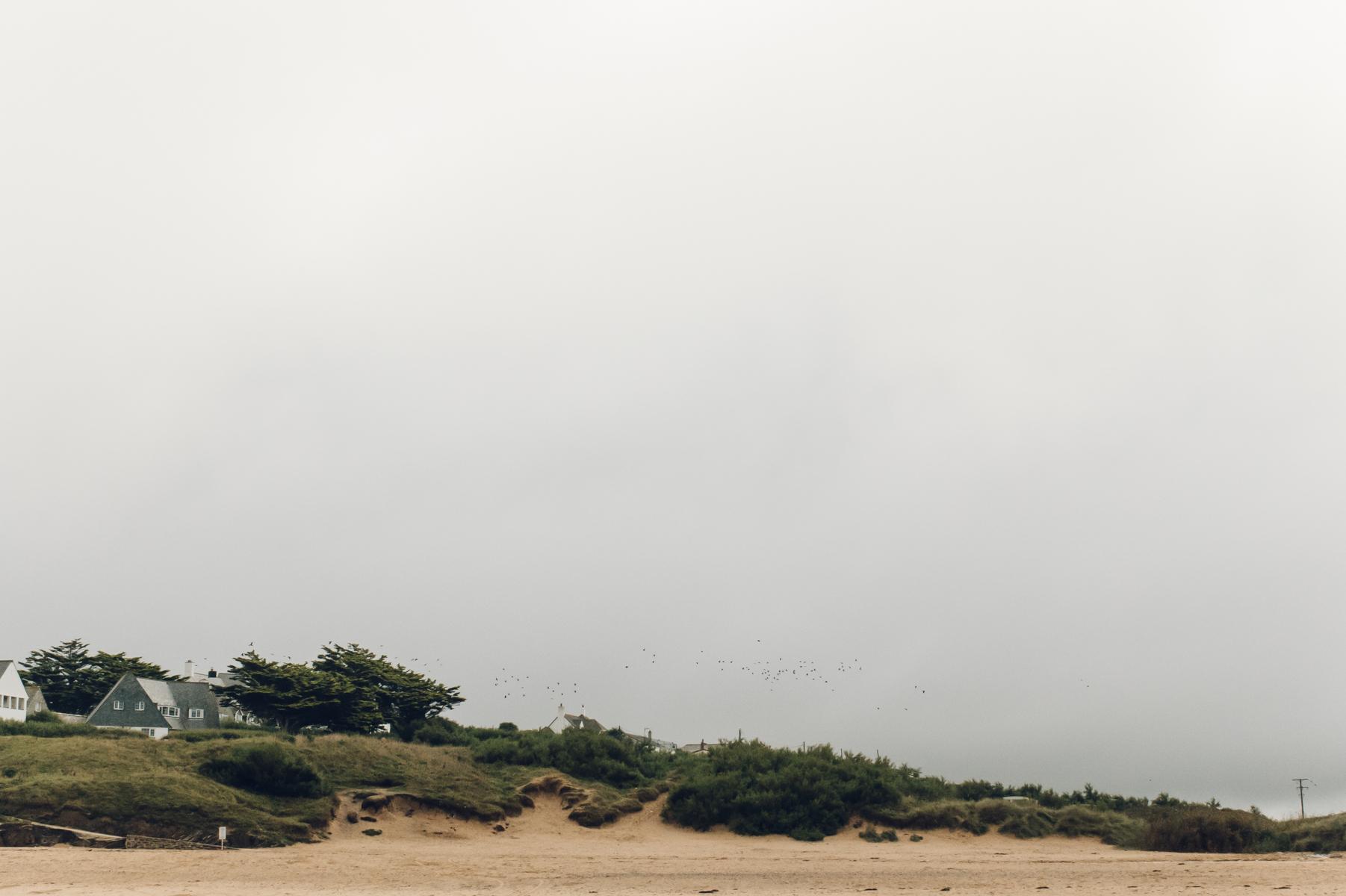 Moody beach and sand dunes.