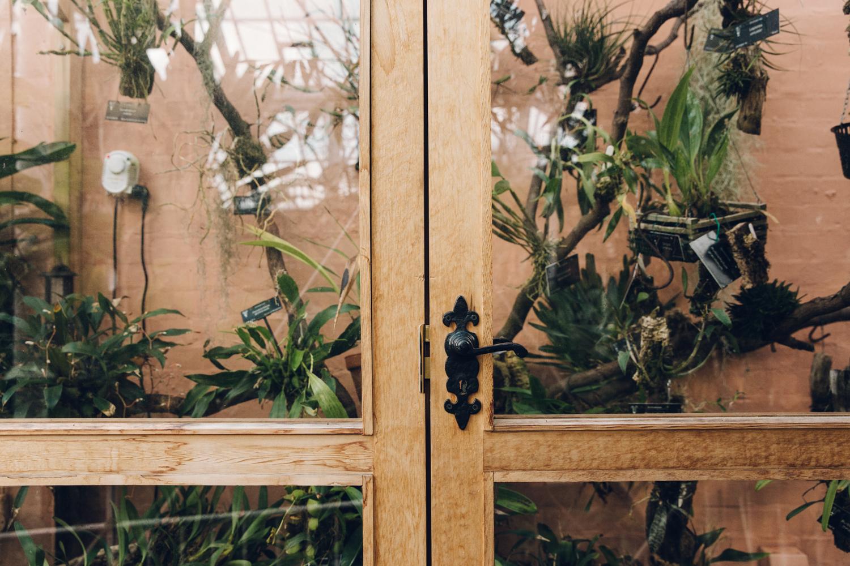 Plant-filled display cabinet inside the Botanical Gardens.