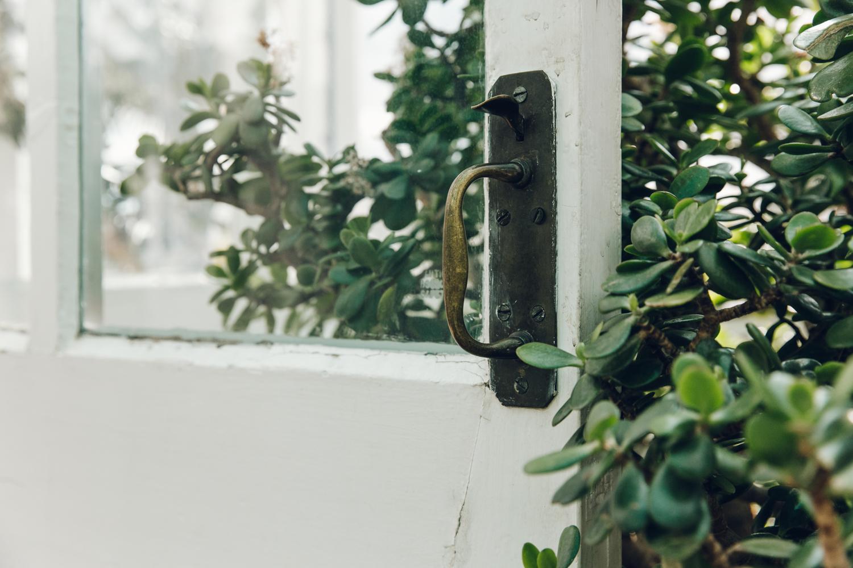 Greenhouse details.
