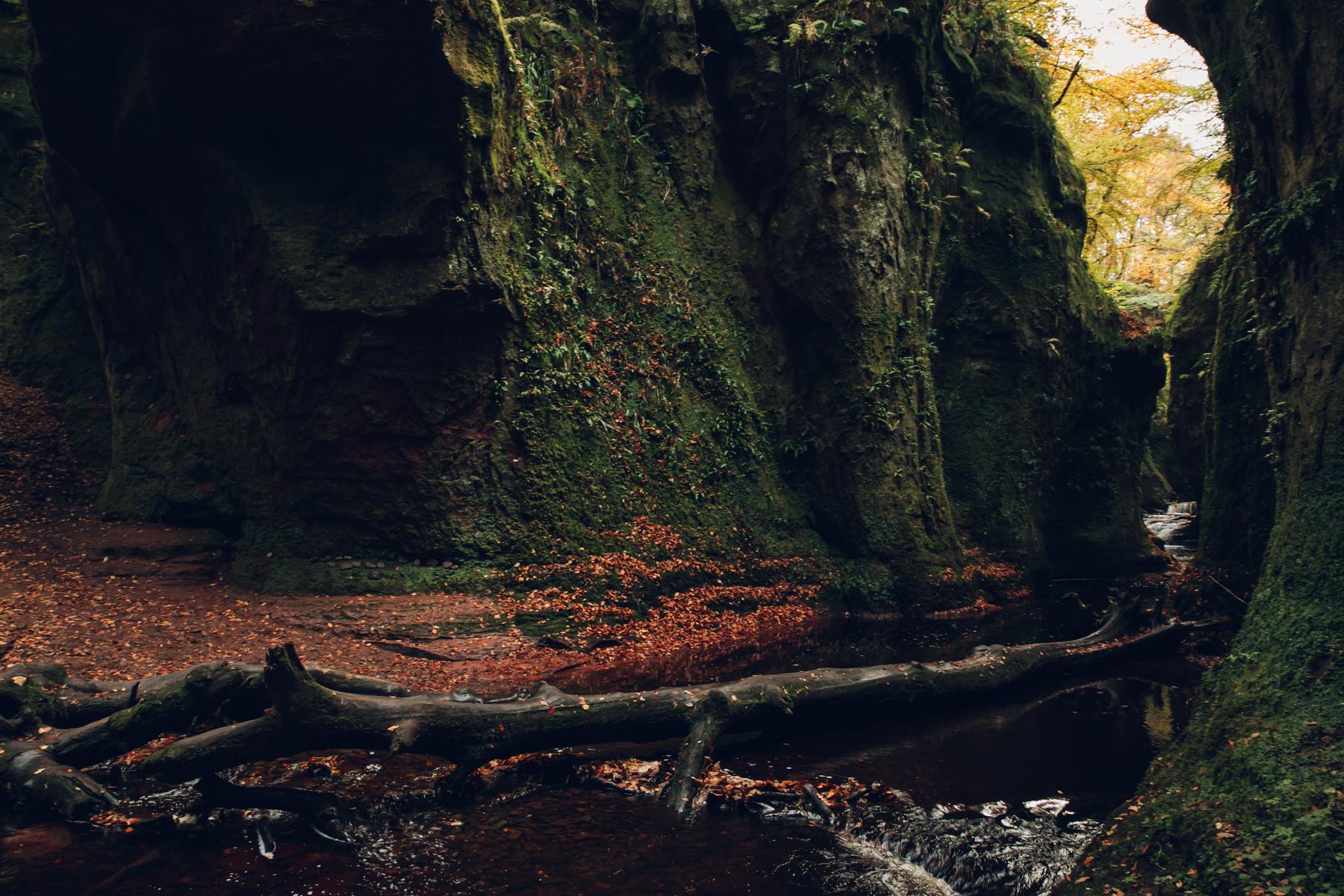 Finnich Glen in Scotland.