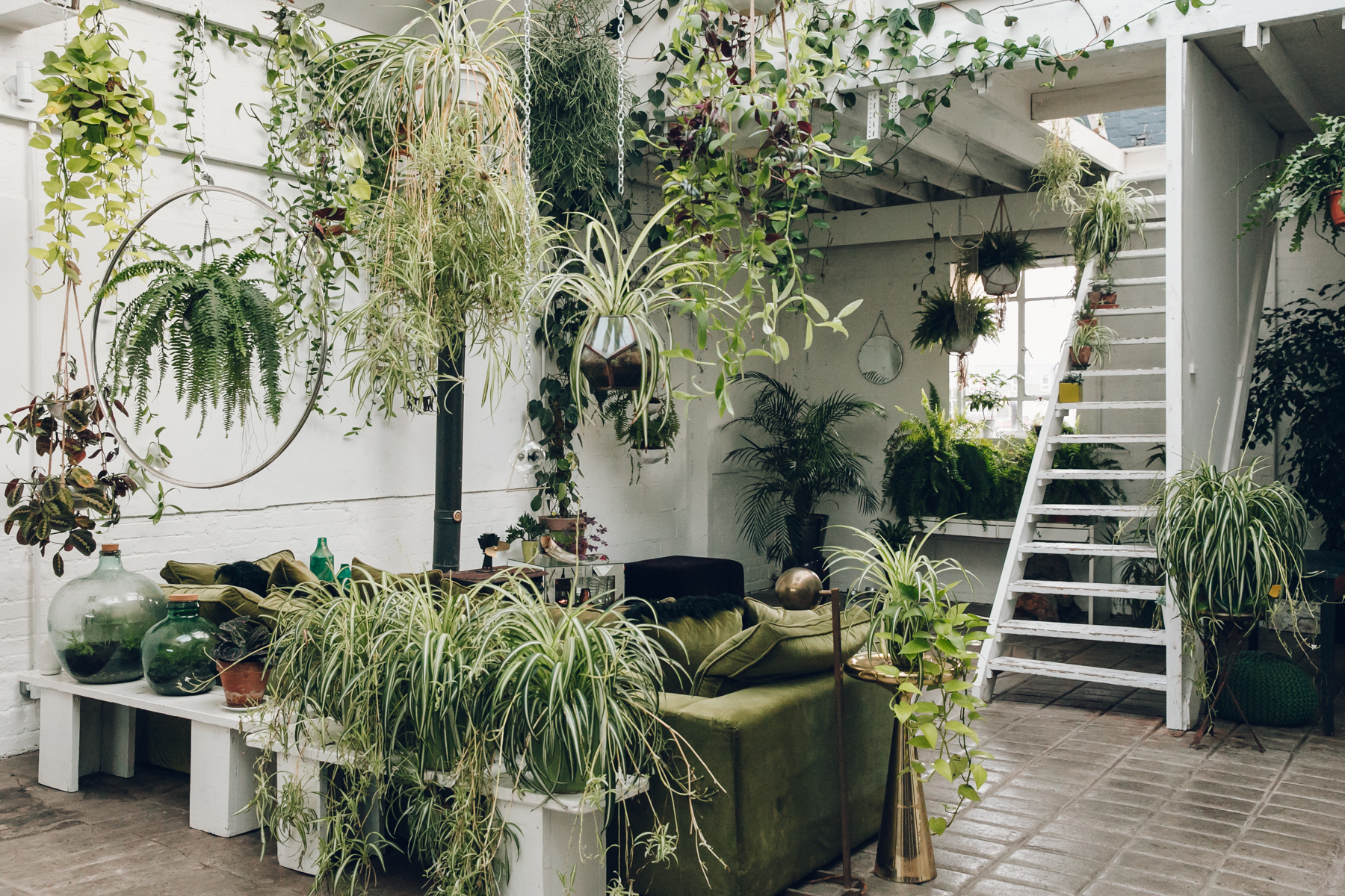 A plant-filled paradise at Clapton Tram in London.