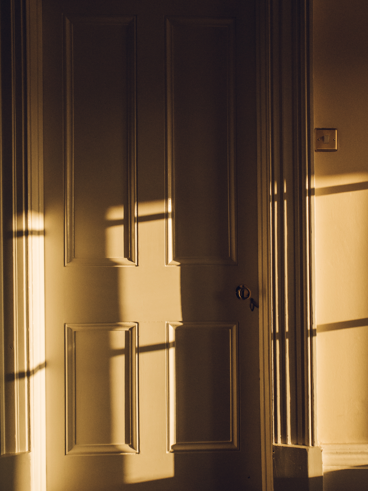 Golden hour light and shadows.