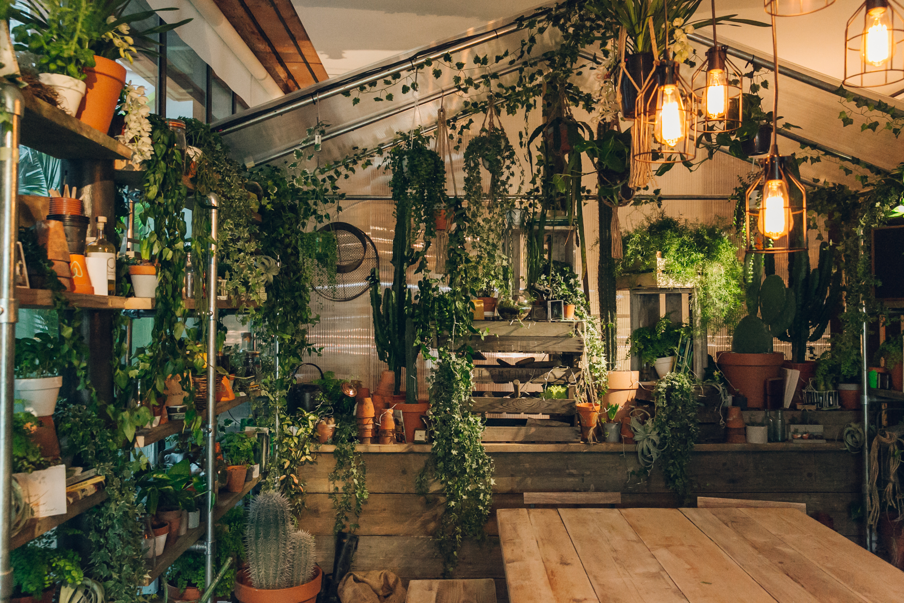 The indoor forest in the 'Outside In' house created by Pantone and Airbnb.