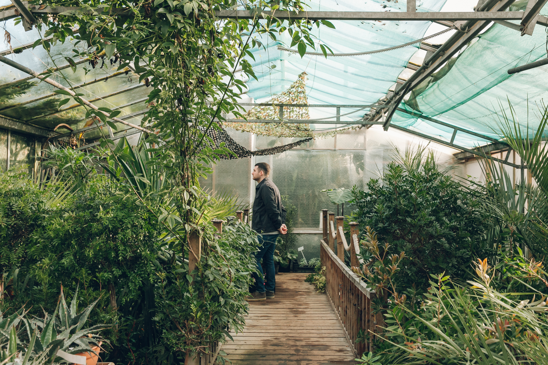 Exploring the plants in the greenhouse at Urban Jungle near Norwich.